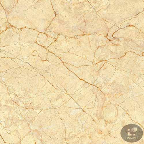 Gạch lát nền Viglacera TB-856