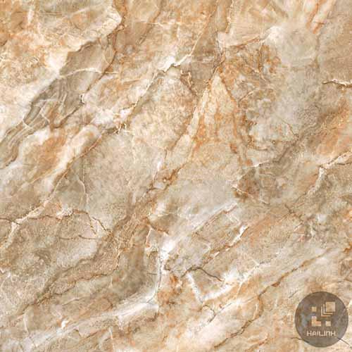 Gạch lát nền Viglacera TQ-811
