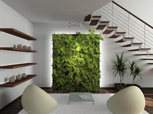 Đưa cây xanh vào không gian sống